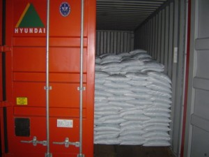 bagged cargo in container 300x225 - Cargo types and packing method in containers